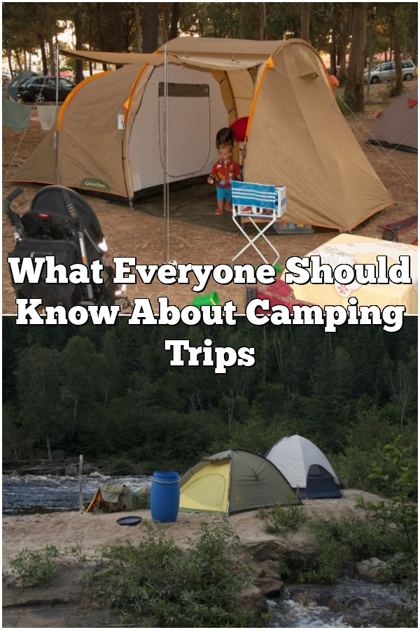 What Everyone Should Know About Camping Trips