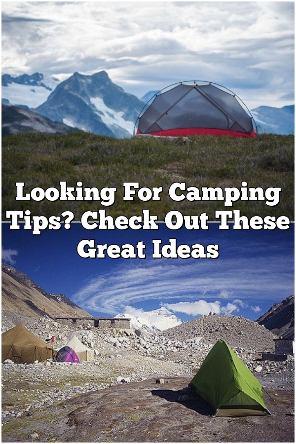 Looking For Camping Tips? Check Out These Great Ideas