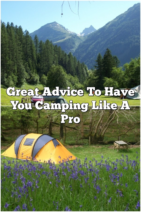 Great Advice To Have You Camping Like A Pro
