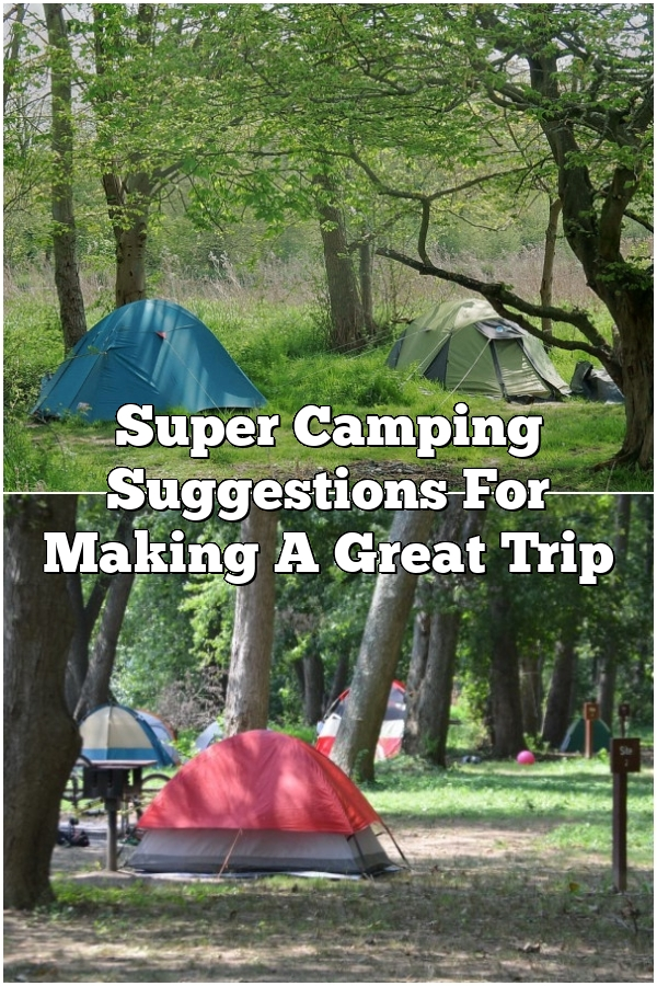 Super Camping Suggestions For Making A Great Trip